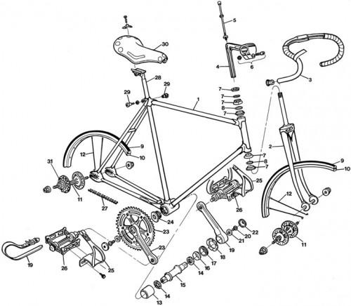 Esquema de una bicicleta piñón fijo